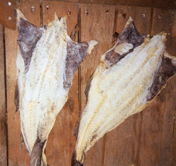 Salted cod lookup beforebuying for Dried salted fish
